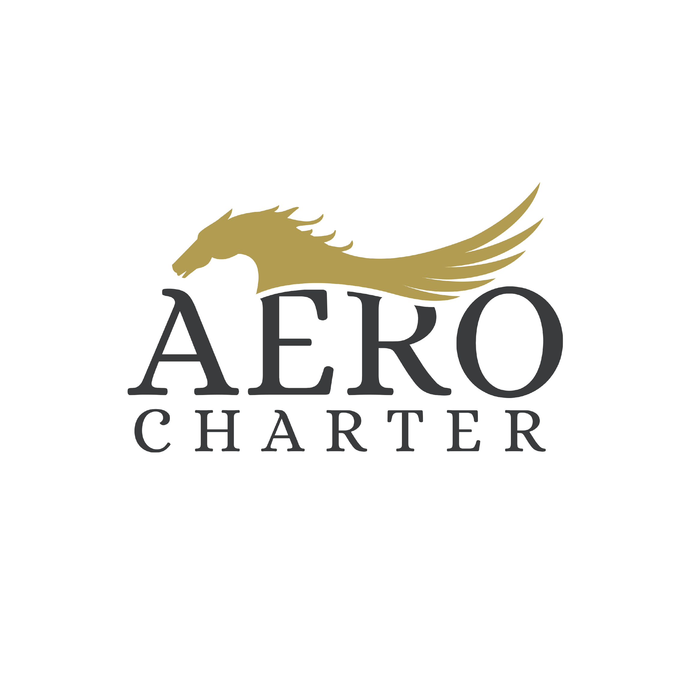 Aero Charter